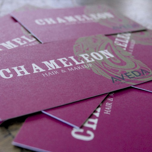 Chameleon Hair and Makeup New Lambton Hairdressers Business Card design