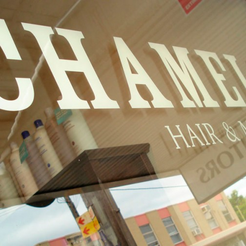 Chameleon Hair and Make up, New Lambton Hairdressers window signage design