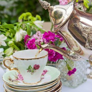 Vintage China Hire Neon Zoo Photography Tea Teacups Styling Design Website Design Branding design