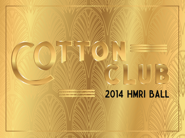 HMRI Ball artwork 2014