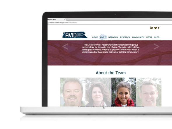 Avid Website design newcastle